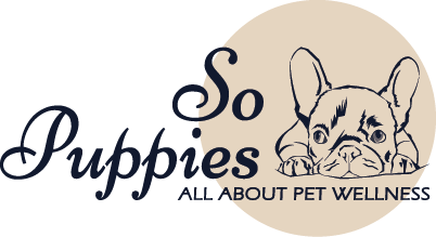 SoPuppies - All About Pet Wellness