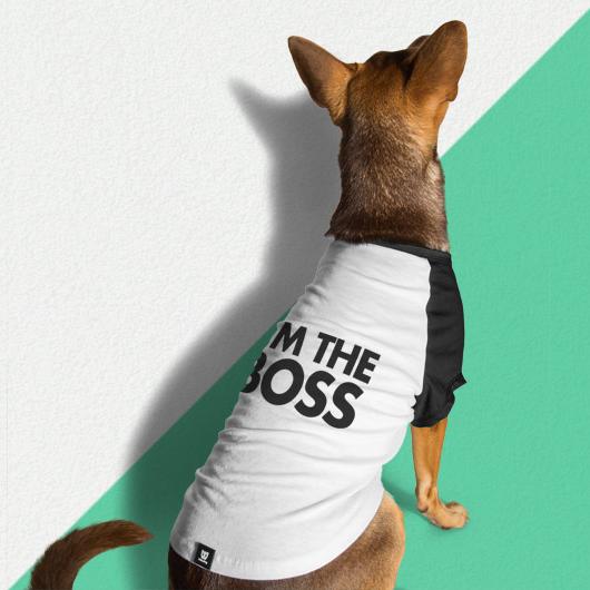 6778fbc0d124 Μπλουζάκι για Σκύλους της ZeeDog T-Shirt I am the Boss Extra Large 60cm